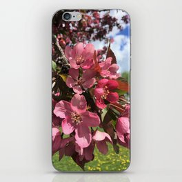 Crab Apple Blossoms iPhone Skin
