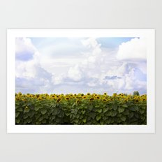 Sunshine and Sunflowers Art Print