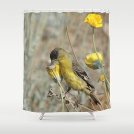 Mr. Lesser Goldfinch Feeds on Seeds Shower Curtain