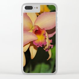 Cattleya (The Corsage Orchid) Clear iPhone Case