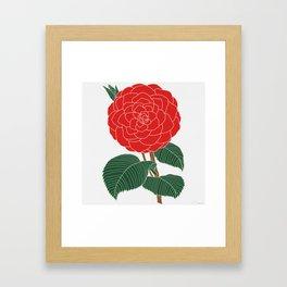 Red Dahlia Framed Art Print