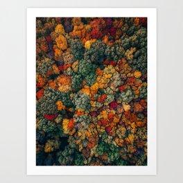 ColorFall Broccoli Art Print