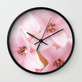 Pink hyacinth Wall Clock