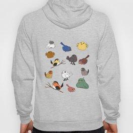Tiny birds Hoody