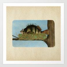 Hawkfish Art Print