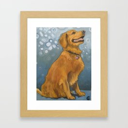 Happy dog from Calendonia Cty Framed Art Print