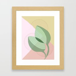 flora IV Framed Art Print