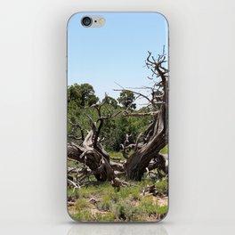 Twisted iPhone Skin