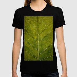 Leaf Vein - HD Natue T-shirt