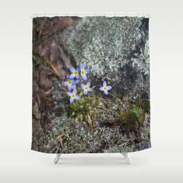 Thyme Leaved Bluets #2 Shower Curtain