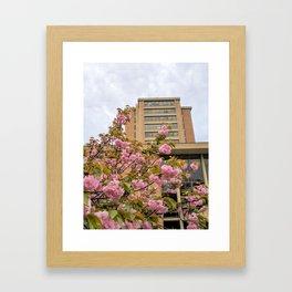 CF4 Framed Art Print