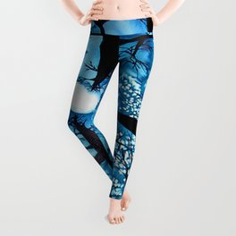 Looking up at Midnight Trees Leggings