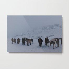 Iceland VI Metal Print