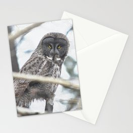 Let Us Prey - Great Grey Owl & Mouse Stationery Cards