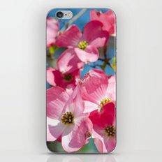 Majestical  iPhone & iPod Skin