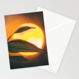 Absence of Light Stationery Cards