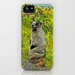 Standing Marmot iPhone Case