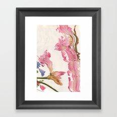 Pinku Framed Art Print
