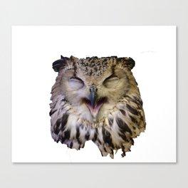 Owlie Canvas Print