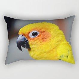 Vibrant Package Rectangular Pillow