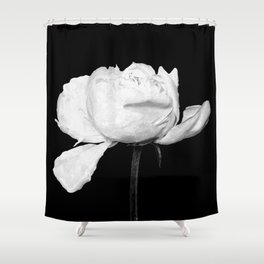 White Peony Black Background Shower Curtain
