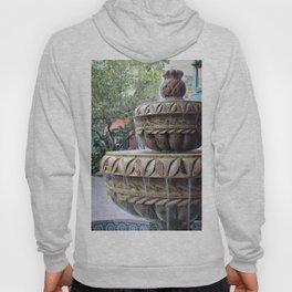 St Augustine Fountain 1 Hoody