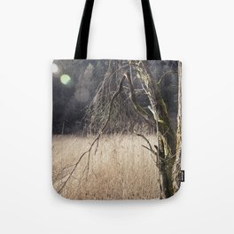 A big leafless tree in a swamp Tote Bag
