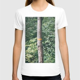 the yellow line on the tree T-shirt