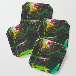 Colorful forest Coaster