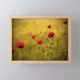 Poppy-field Poppies Flowers Flower Framed Mini Art Print