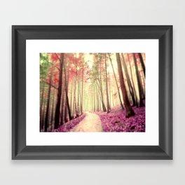 Dreamwalk Framed Art Print