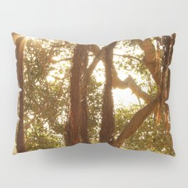 Day's End Pillow Sham