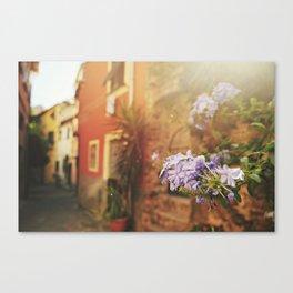 Monterosso al Mare Canvas Print