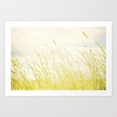 Sweet grass Art Print