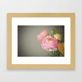 The prettiest one Framed Art Print