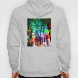 colorful abstract forest Hoody
