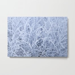 Grass covered in winter frost Metal Print