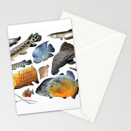 Large Freshwater Tropical Fish Stationery Cards