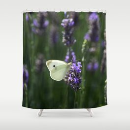 White Butterfly in a Lavender Field Shower Curtain