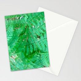 Adirondack Ferns Stationery Cards
