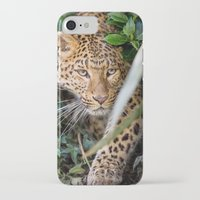 jaguar iPhone & iPod Cases featuring JAGUAR by Ylenia Pizzetti