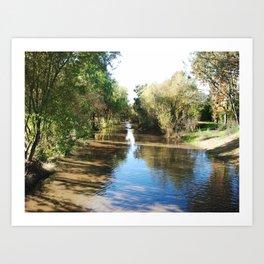 Copeland Creek 2012-11-28 Art Print