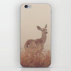 Hello my deer iPhone & iPod Skin