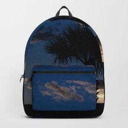 Palm Sunset - IV Backpack