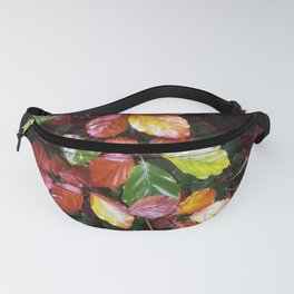 AUTUMN LEAF PALLETTE Fanny Pack