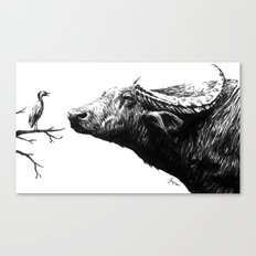 Moocow Canvas Print