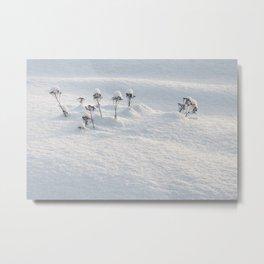 Winter Fairies Metal Print