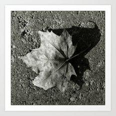 'Maple Leaf' Art Print