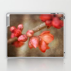 Chaenomeles buds Laptop & iPad Skin