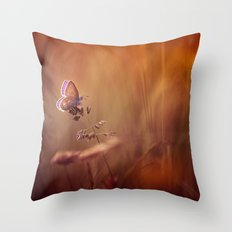 Wonders of a sunset Throw Pillow